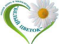 "Акция "" Белый цветок"""